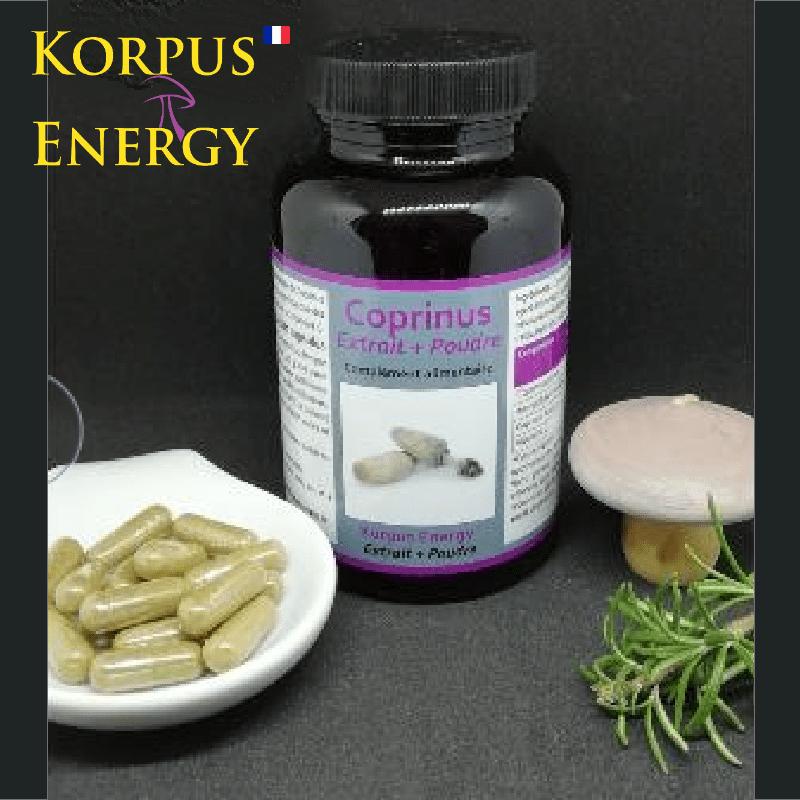 Coprinus - Korpus Energy France