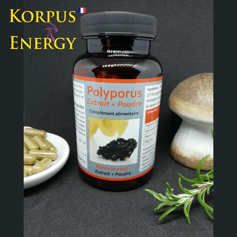 Polyporus Korpus Energy France