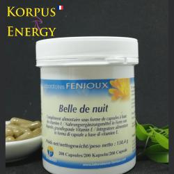 Belle de nuit - Korpus Energy France