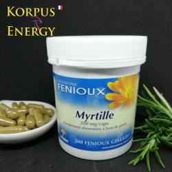 Myrtille - Korpus Energy France