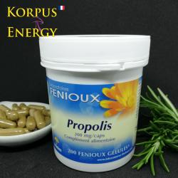 Propolis - Korpus Energy France