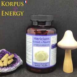 Héricium Korpus Energy France