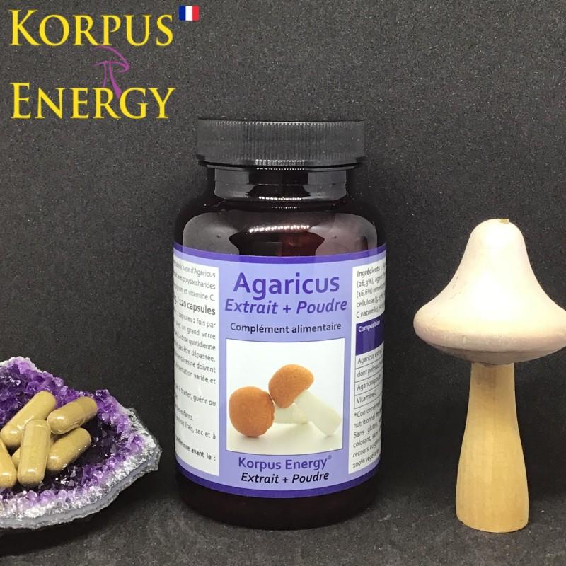 Agaricus Korpus Energy France